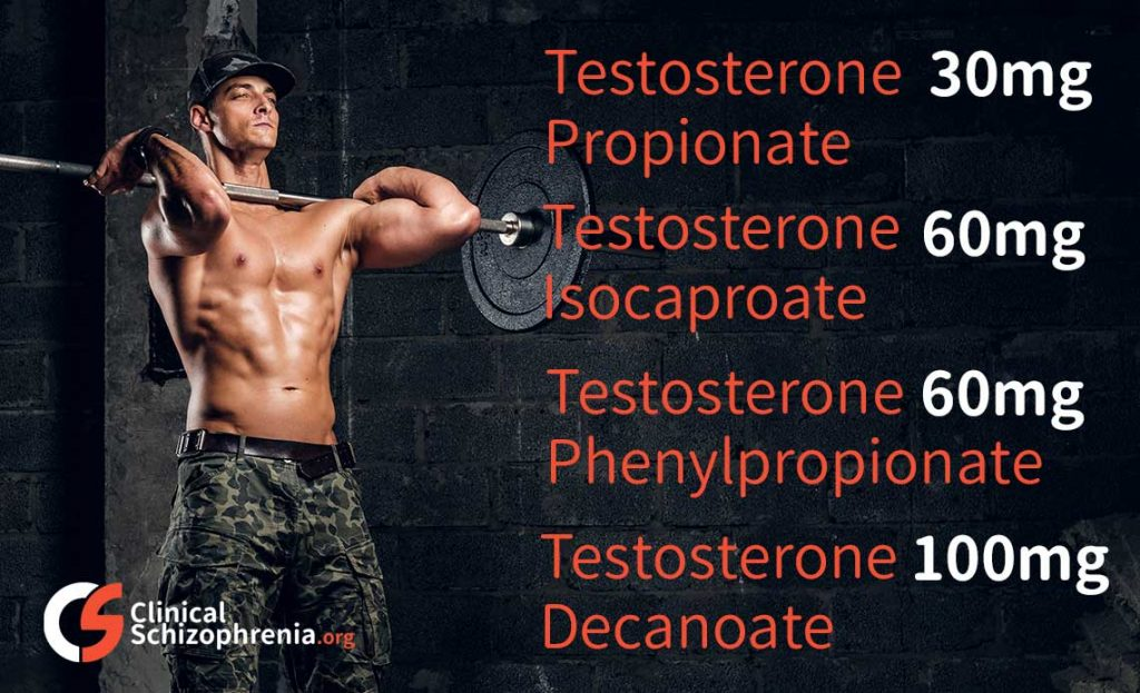 sustanon cycle for beginners